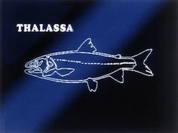 Ils ont quoi les gens avec Thalassa hein ?