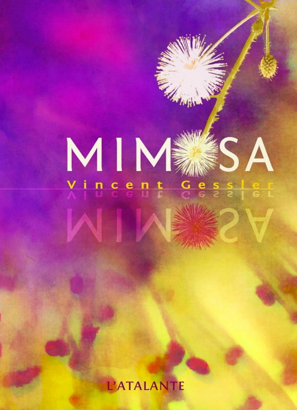 Mimosa – Vincent Gessler