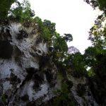 malaisie_batu_caves_20