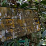 malaisie_cameron_highlands_164