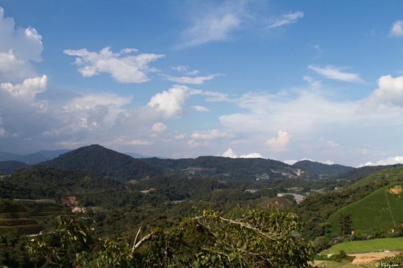 malaisie_cameron_highlands_29