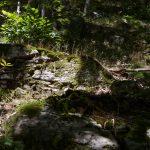 castans_sentier_ruisseaux_10
