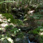 castans_sentier_ruisseaux_16