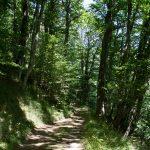 castans_sentier_ruisseaux_6