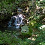 castans_sentier_ruisseaux_7