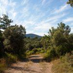 caunes_minervois_plateau_matte_15