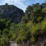 caunes_minervois_plateau_matte_3