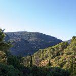 caunes_minervois_route_moutons_22
