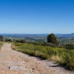 caunes_minervois_route_moutons_7