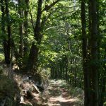 pic_nore_sentier_panoramas_48