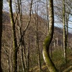 vacances_pays_basque_basse_navarre_sources_bidouze_29
