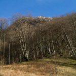 vacances_pays_basque_basse_navarre_sources_bidouze_34