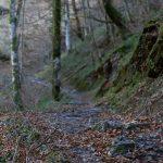 vacances_pays_basque_soule_holzarte_15