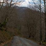 vacances_pays_basque_soule_larrau_randonnee_2