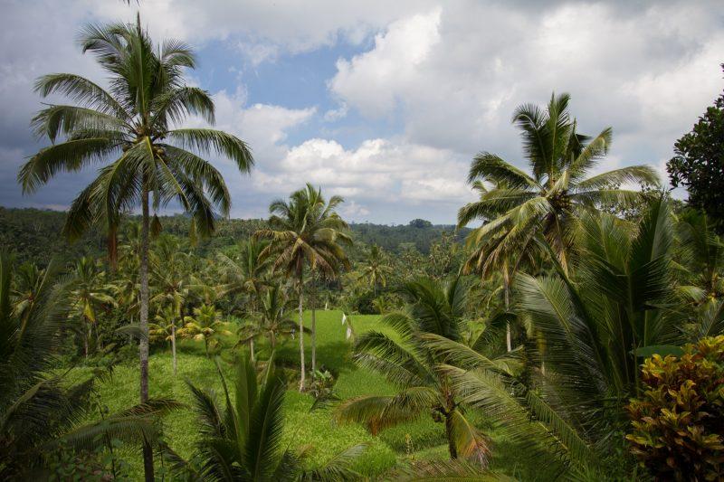 voyage-indonesie-gunung-kawi-25