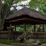 voyage-indonesie-ubud-10