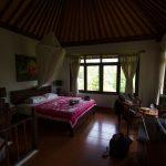 voyage-indonesie-ubud-bucu-view-2