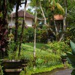 voyage-indonesie-ubud-bucu-view-6