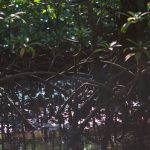voyage-indonerie-nusa-lembongan-39
