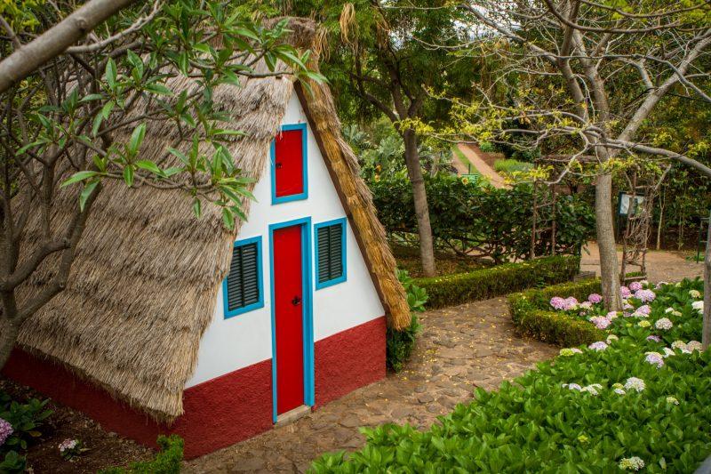 portugal-madere-funchal-jardim-botanico-33