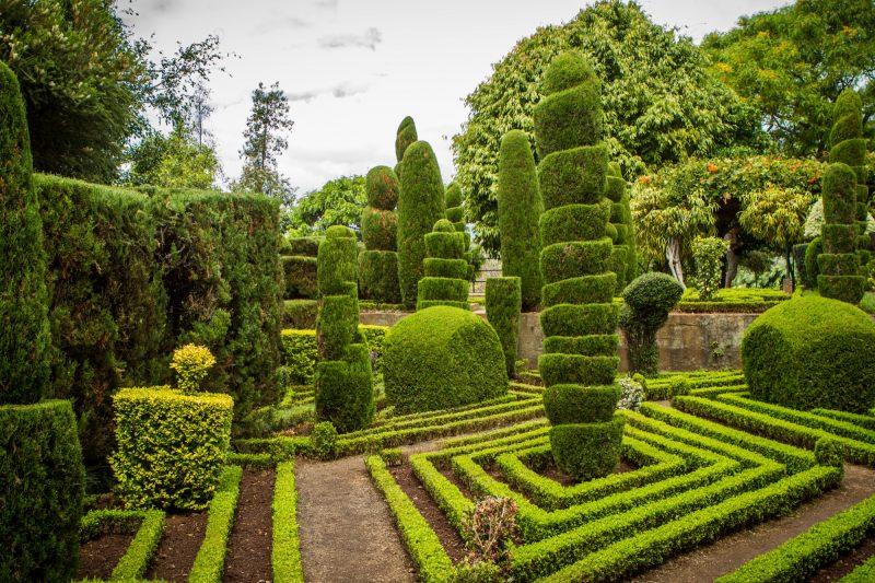 portugal-madere-funchal-jardim-botanico-64