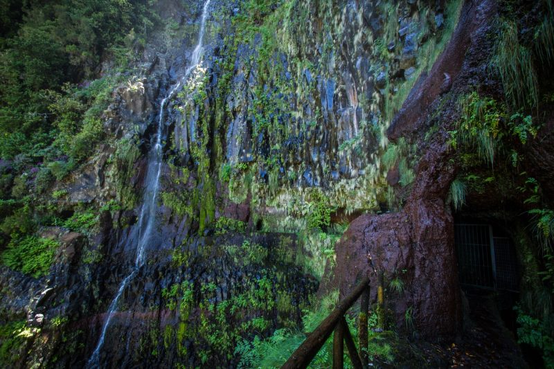 portugal-madere-levada-25-fontes-cascada-risco-47