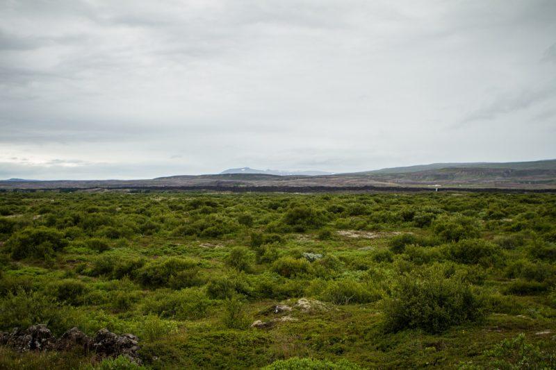 voyage-road-trip-islande-Þingvellir-35
