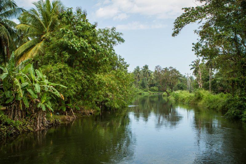 sri-lanka-polonnaruwa-1